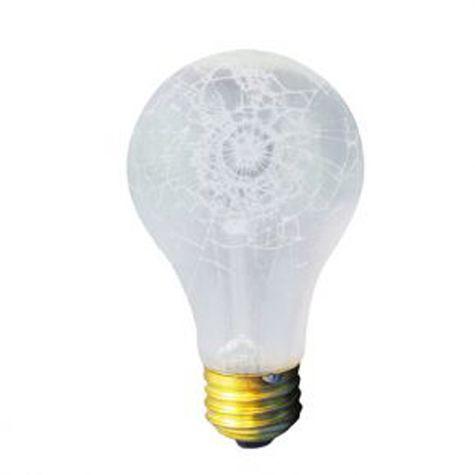 60W A19 Bulb