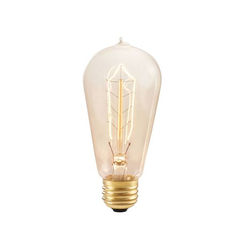 1890 Era 40W Light Bulb