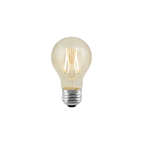 LED Edison A19 Bulb
